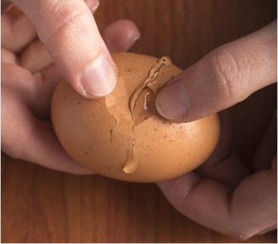 0ae8df60eb089e44d35b6a98ea549498_s-egg