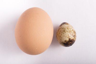 鶏の卵とうずらの卵