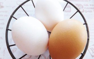 卵の殻の色